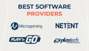 Best Software Providers