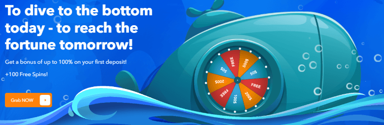 ★ First Deposit Bonus of 100% up to C$175 + 100 Free Spins on Aloha at FlipperFlip