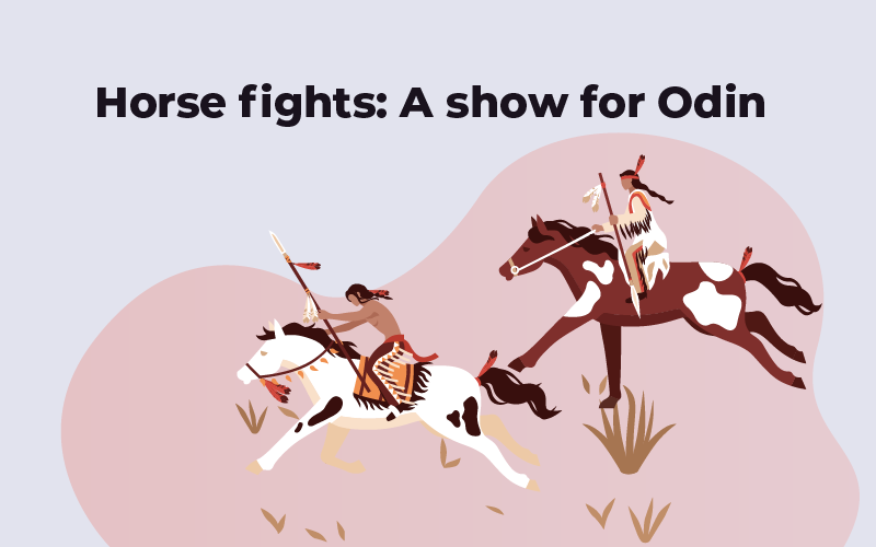 Horse fights: A show for Odin